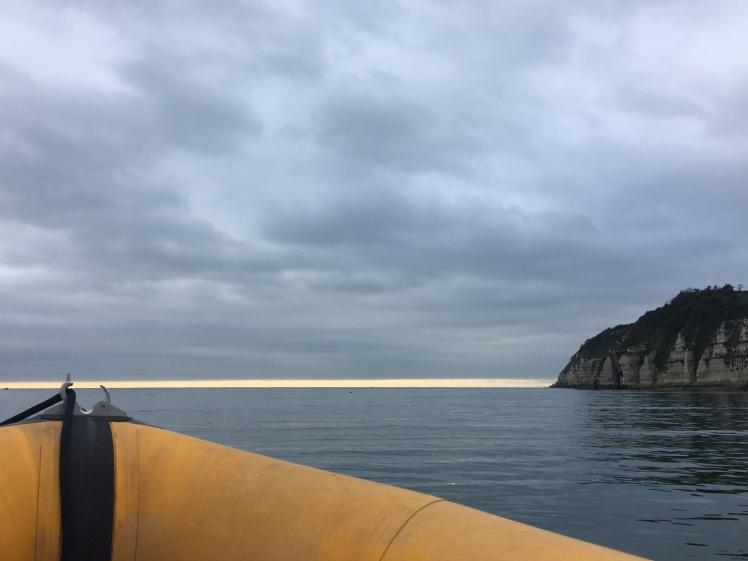 powerboat, rib boat, beer dorset, lyme regis, lyme rib rides, sea view, horizon