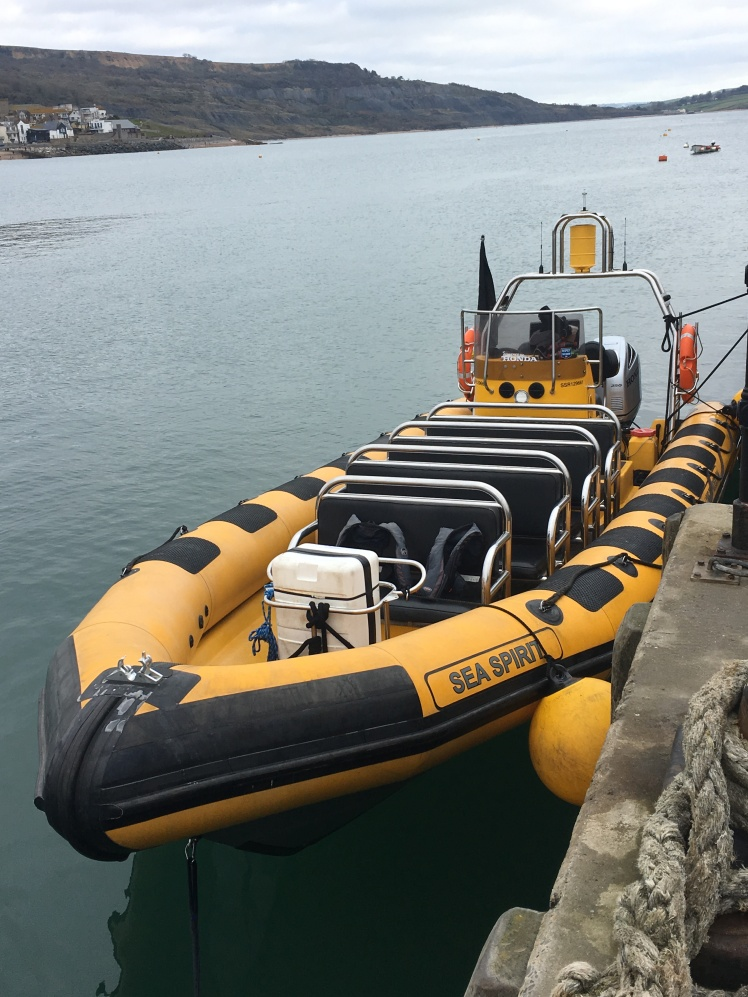 powerboat, jurassic coast, Sea Spirit, Coastal Cruise, Lyme Rib Rides, Adventure blogger, Dorset